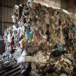 Recycling_JamieMaldonado-7