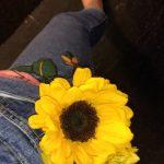 yellow flower pocket