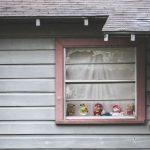 LittleFigures-NorthTyler-NeighborhoodBehindZoo