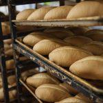 0_Fresh-Bread-Panderia-01