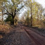 0_Red-Clay-Dirt-Road-03_small