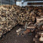 SMALL-0_Stanleys-Pecan-Wood-Brisket-and-Ribs-06
