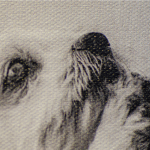 doggy-up-close-1